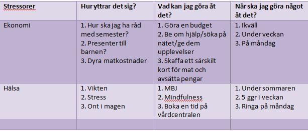 vad är en stressor