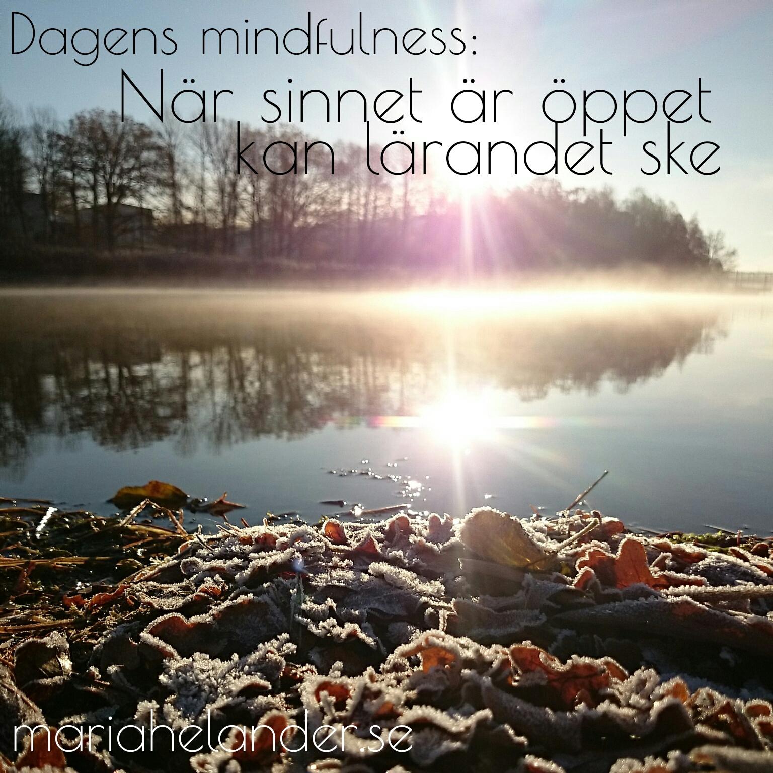 Gratis mindfulness
